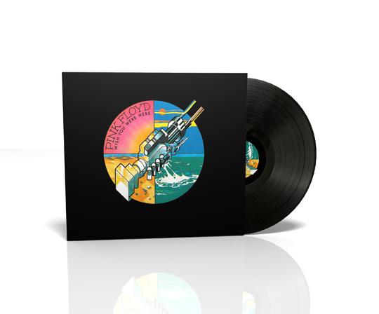 Why Pink Floyd Vinyl Records - Pink Floyd Forum