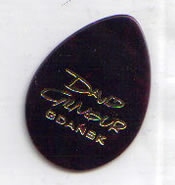 David Gilmour Gdansk Special Edition Plectrum