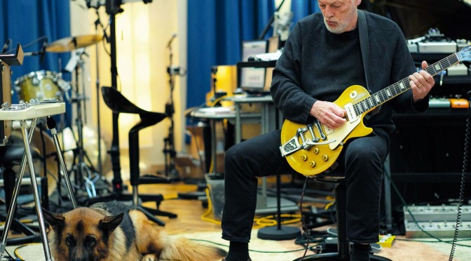 Brazil, Argentina and Chile added to David Gilmour Tour in 2015
