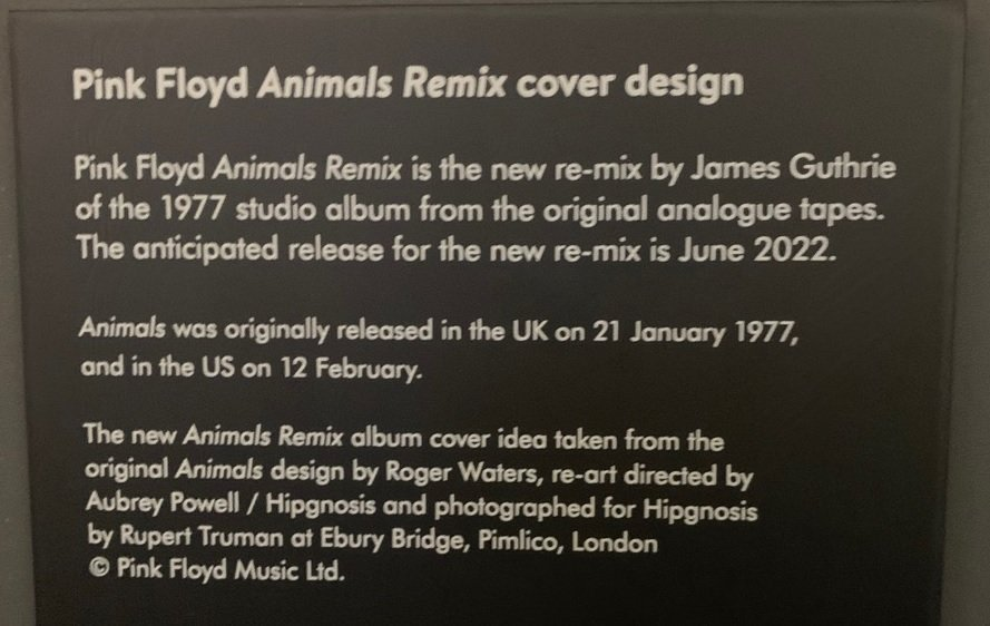 Animals Release Date June 2022